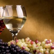 travelling_excursion_wine_tasting_croatia